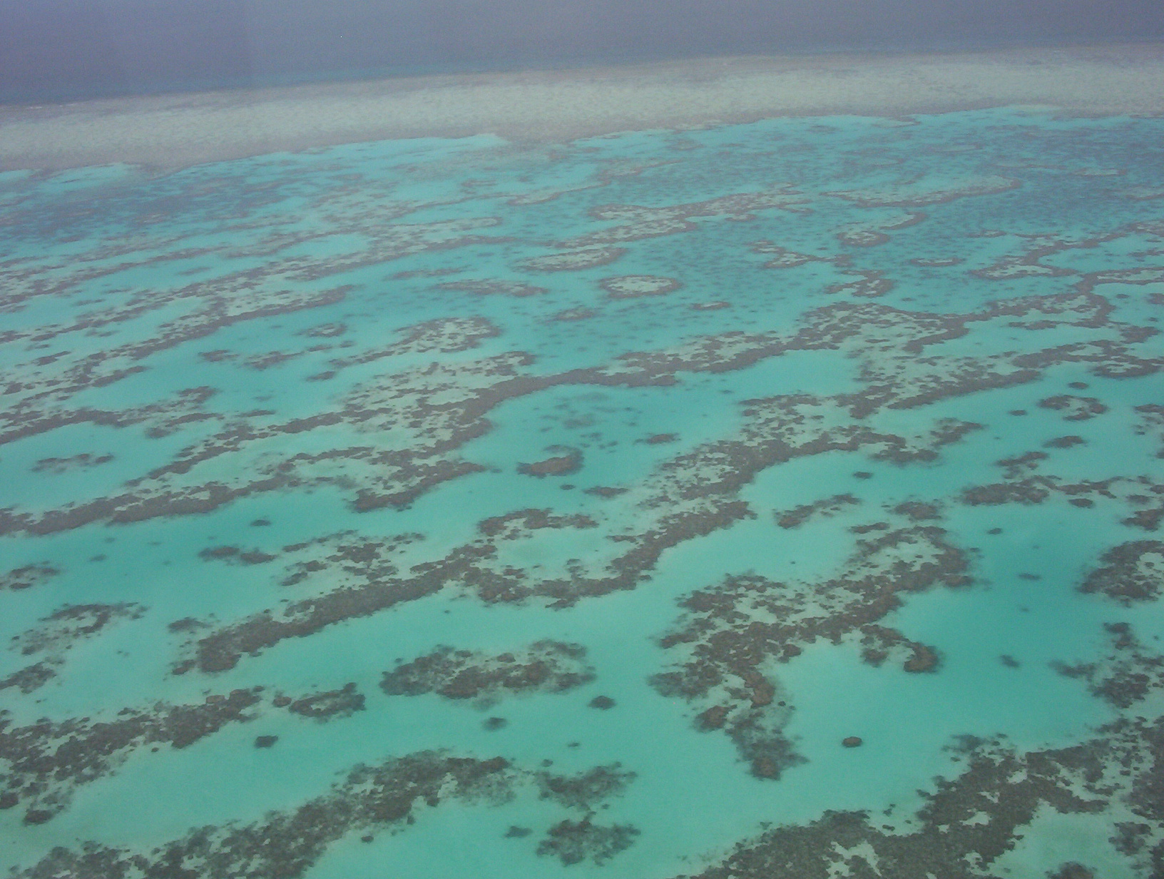 The climate change is effecting the Barrier Reef