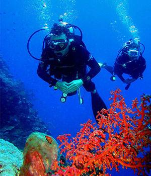 bunaken-marine-park-indonesia-scuba-diving