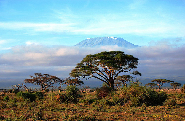 The Peak of Kilimanjaro - Mount Kilimanjaro