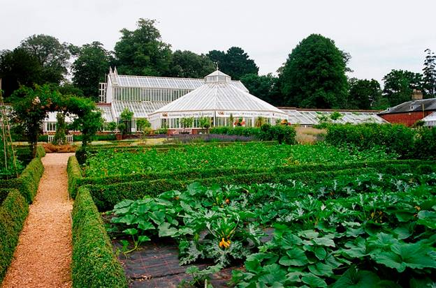 staunton-country-park-glasshouse