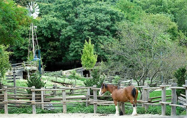 riverdale-farm-toronto