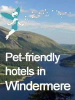 pet friendly windermere