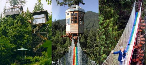 Amazing Treehouse Hotels in USA