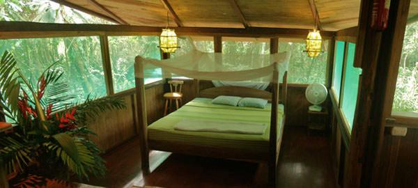 Amazing Treehouse Hotels