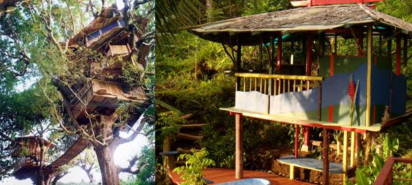 Amazing Treehouse Hotels in China