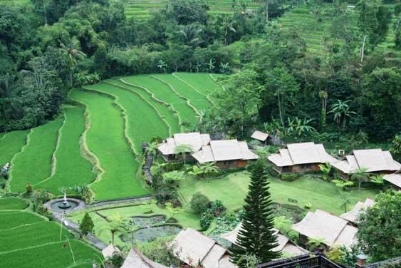 Bali_Bali_Usada_Meditaion
