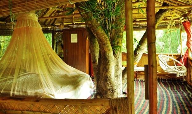 Interiors of the honeymoon tree house 2