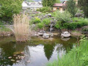 The Botanical Gardens of Innsbruck