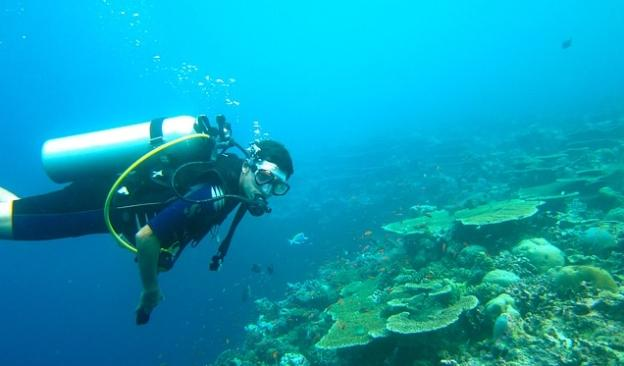 Scuba Diving Locations For Beginners - Maldives