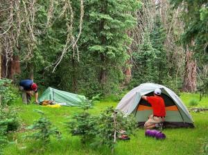 Best Camp Site Rules