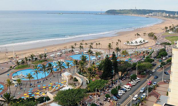Durban City beach frond