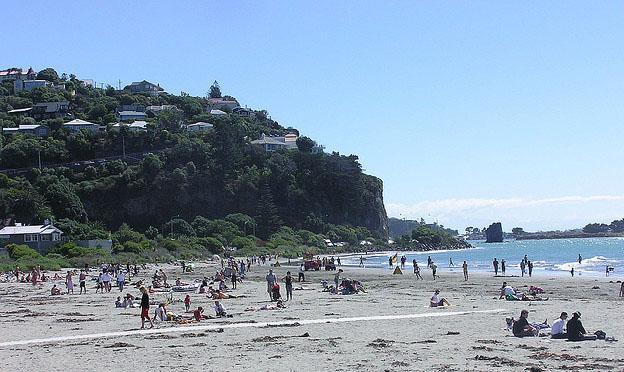 Christchurch city beach frond