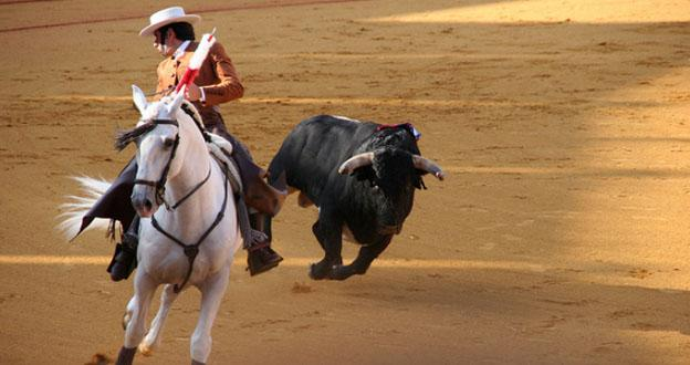 Costa del Sol - Bullfighting Spain