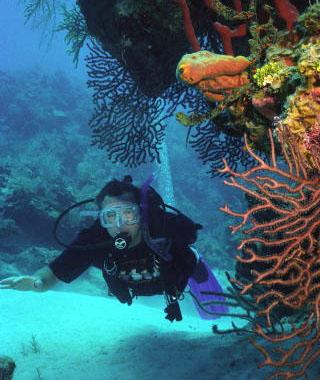 Visit the Caymans islands for scuba diving