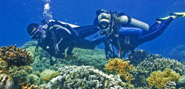 5 best places to go scuba diving hotels fairy - Best place to dive the great barrier reef ...
