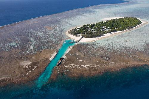 Scuba Diving Locations in Australia - Heron Island
