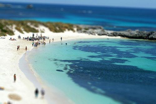 Scuba Diving Locations in Australia - Rottnest island