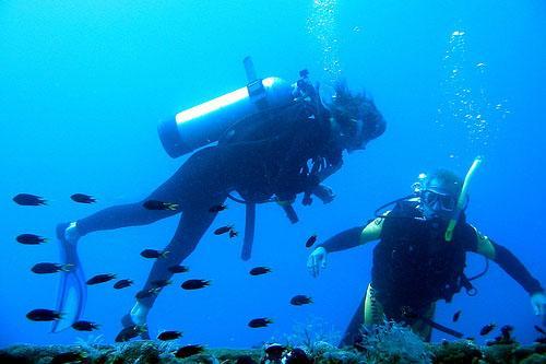 Scuba Diving Locations in Australia - Yongola Wreck