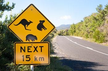 Travel Destinations in Australia - Australia road sign