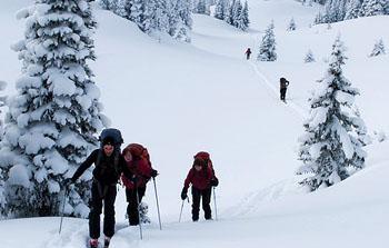 Extreme Ski Adventures - canada skiing