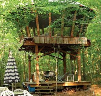 Unusual places to stay in Florida - Yurt tree house