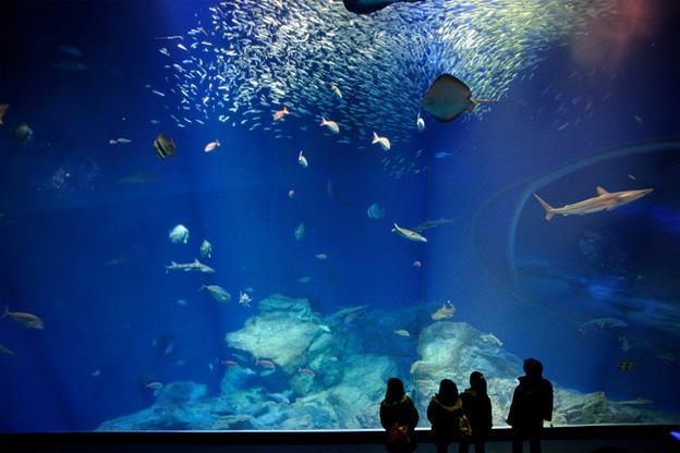 Aquaworld Aquarium Crete