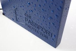 trip ruined by worn passport