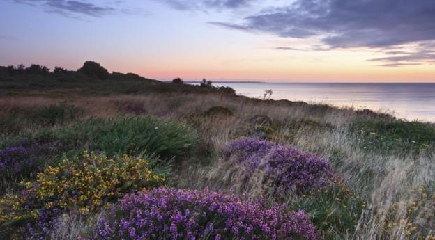 Lesser known attractions in the UK - Dunwich heath 2016