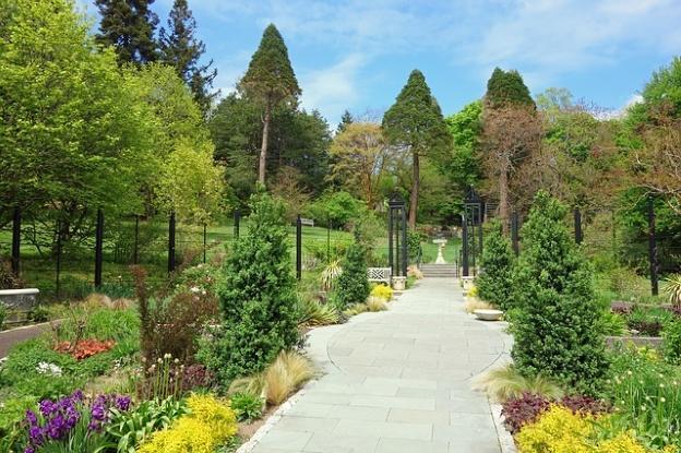 Morris Arboretum Philly