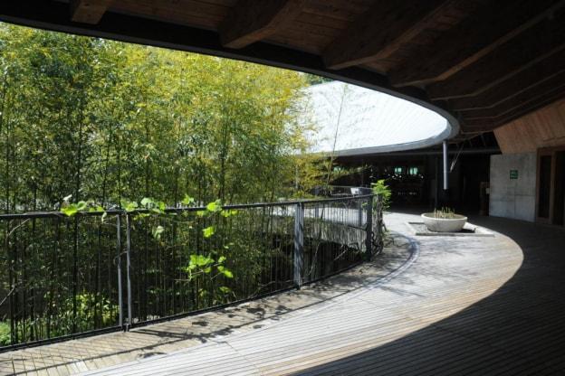 Makino Botanical Garden Koch